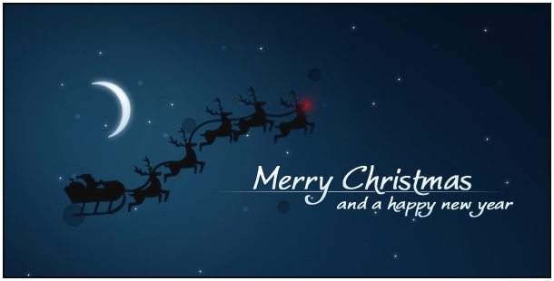 Merry Christmas from Medina Joinery